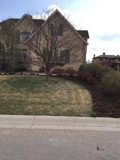 Fort Collins Lawn Aeration