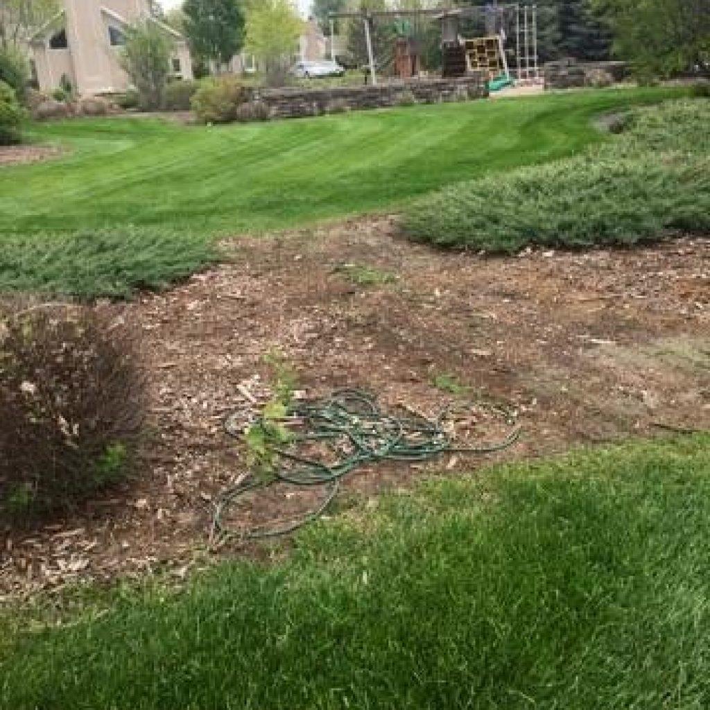 Fort Collins Lawn Maintenance