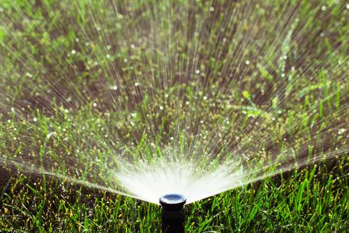 Fort Collins Sprinkler Blowout
