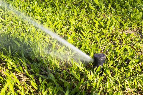 Fort Collins Sprinkler Repair
