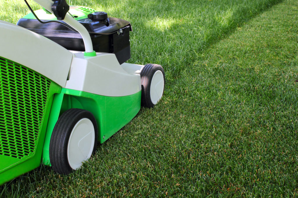 Fort Collins Weekly Mowing