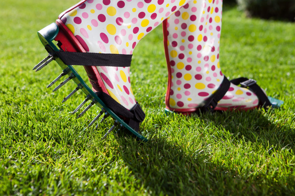 Lawn Aeration Fort Collins