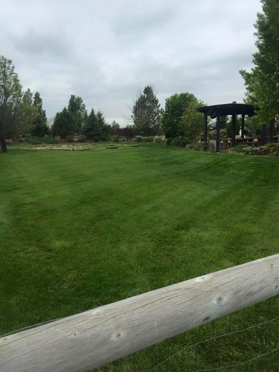 Lawn Care Company Fort Collins CO