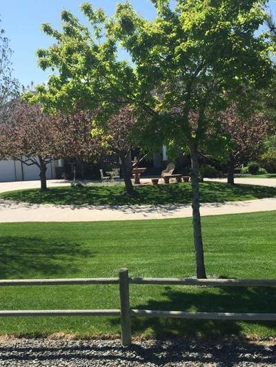 Lawn Care Fort Collins CO