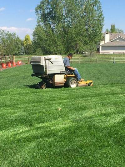 Fort Collins Lawn Mowing Amp Yard Care Fort Collins Lawn